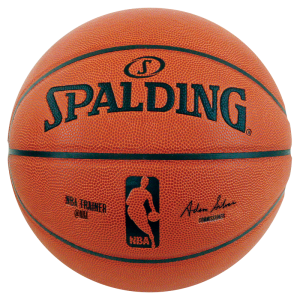 Cieżka piłka do kosza NBA Trainer Weighted Ball